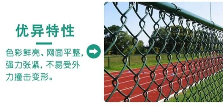 菏泽 小区球场 公园球场围栏网 学校篮球场防护网 加工定制 可上门量尺示例图5